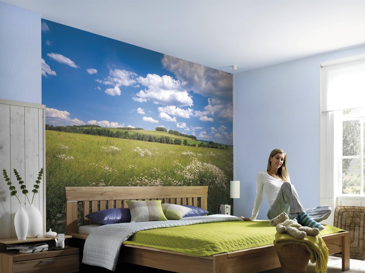 Zöld mező fali poszter
